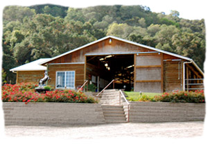 Oak Park Equestrian Center Is San Luis Obispos Top Facility Designed For The Stabling And Training Of High End Equine Athletes Our Facilities