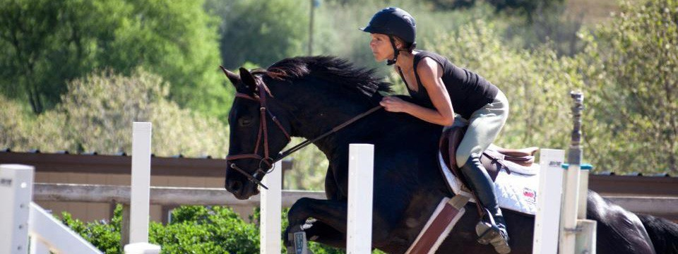 Horse Riding And Jumping Lessons In San Luis Obispo Ag